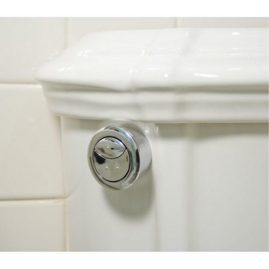 Deal Flush Toilet will Save Water